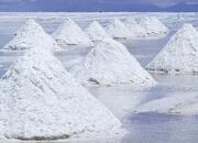 有色金属:国际四大盐湖提锂企业锂盐产量增长低预期