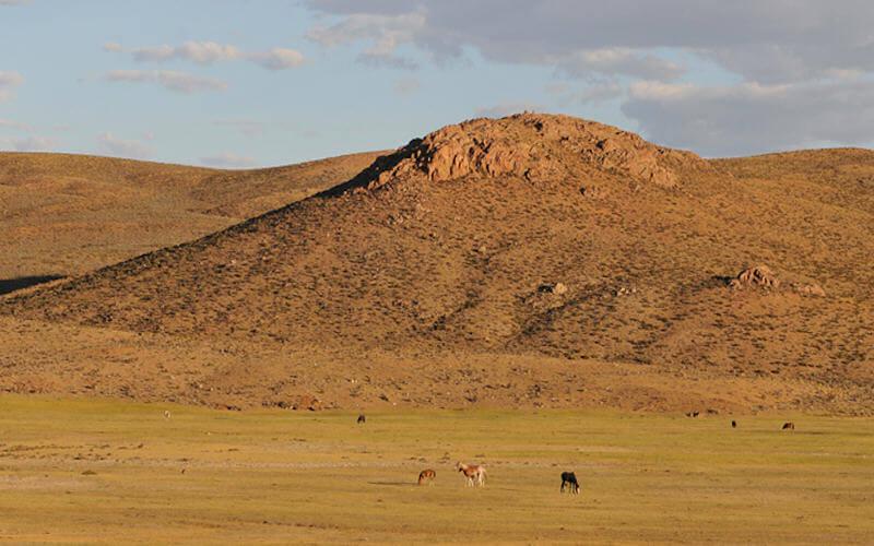 Patagonia Gold斥资1500万美元收购阿根廷金银项目