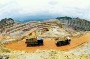 紫金矿业携手金洲慈航设立黄金资产管理公司
