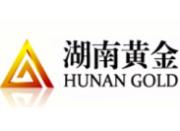 湖南黄金:关于新疆辰州矿产投资有限公司完成注销的公告
