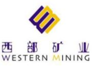 601168:西部矿业关于为控股子公司提供担保的公告