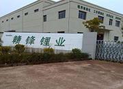 赣锋锂业拟4500 万元设立参股子公司青海兆锋