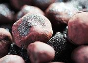 进口铁矿石价格上涨 淡水河谷一季度铁矿石销量破纪录