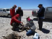 2018年1季度自然资源部评审备案矿产资源储量成果信息情况