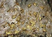 墨西哥埃尔科布雷斑岩铜金矿等进展